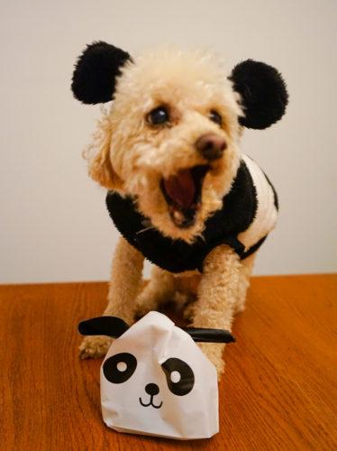 Panda cookies for J