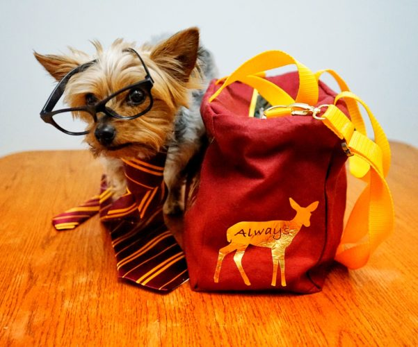 Harry Potter lunch tote
